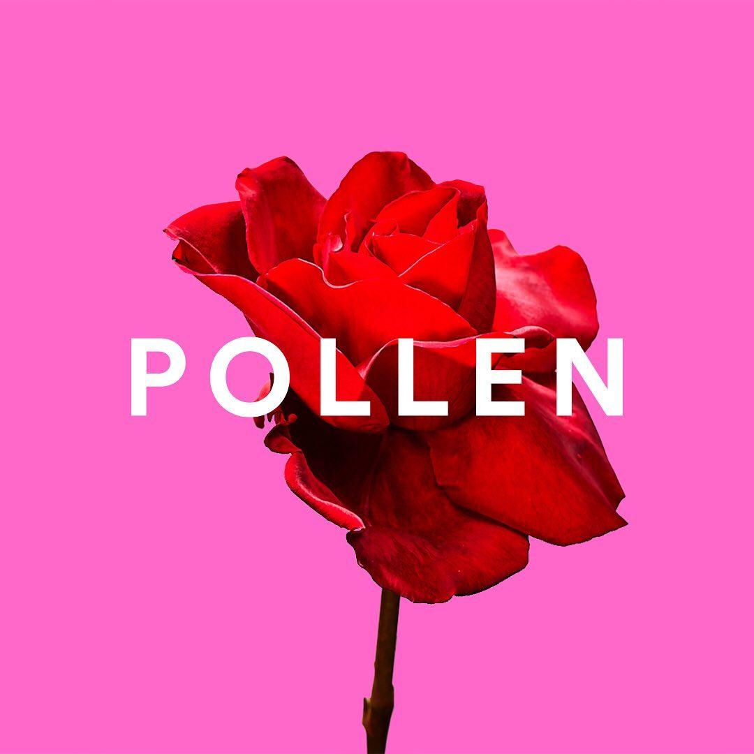 Spotify Pollen
